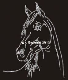 Bügelbild Strass Pferd TOLLER Pferdekopf 150301