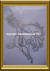 Hotfix Strassbild Pferde Rodeo Western Cowboy Reiten 110223