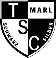Beispiele Strass Logo UNVERKÄUFLICHES MUSTER